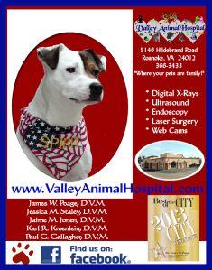 Valley Animal Hospital Sponsor